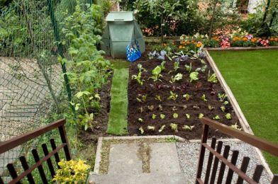 huerto-jardin